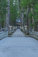 和歌山県 春の高野山