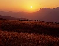 奈良県 そに高原
