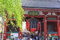 東京都 浅草寺の雷門