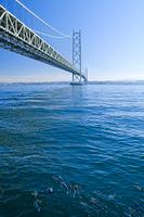 兵庫県 ボラの群れと明石海峡大橋