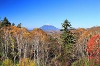 北海道 中山峠から見る羊蹄山