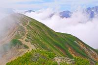 長野県 爺ケ岳から湧く雲と立山の稜線
