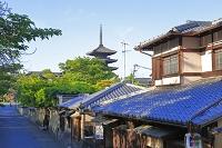 京都府 ねねの道 八坂の塔