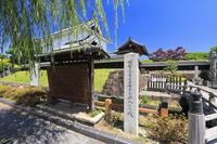 京都府 勝竜寺城 模擬櫓と模擬塀