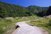 新潟県 坂戸城跡