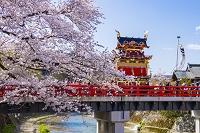 日本 岐阜県 高山祭