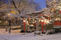 京都府 雪景色の辰巳大明神