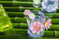 ナデシコの花とコップと青竹