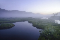群馬県 中田代から望む朝の池塘と朝霧