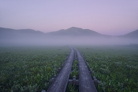 群馬県 中田代から望む朝焼けの至仏山