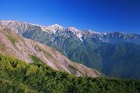 長野県 八方尾根より白馬三山