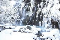 日本 北海道 白ひげの滝