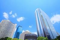 東京都 新宿 超高層ビル群 初夏