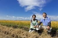 稲田に座る農家の夫婦