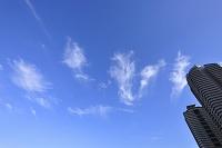 東京都 江東区 東雲の空