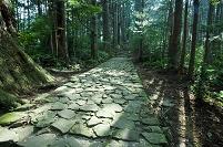 和歌山県 熊野古道 大門坂