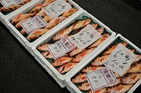 函館魚市場