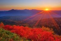 北海道 赤岳第一花園から望むナナカマドの紅葉と武利岳などの山...