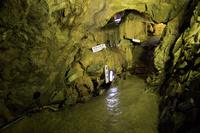 岐阜県 大滝鍾乳洞の洞内 竜王洞付近