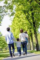 新緑の公園を歩く日本人家族の後ろ姿