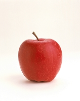 食品 果実類 フルーツ