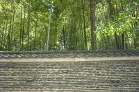 京都府 大徳寺