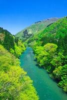 富山県 新緑の五箇山 飛越峡と庄川
