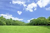 緑の草原とハート型の雲