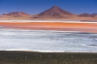 ボリビア ラグナ・コロラダとフラミンゴ