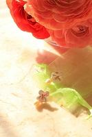 花のある生活イメージ パンジーと真珠のピアス
