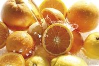 オレンジ レモン グレープフルーツ
