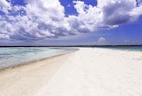 タンザニア マフィア島