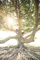 木登りする日本人の子供