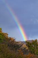 鳥取県 江府町 鍵掛峠の虹