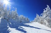 長野県 樹氷と横手山