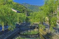 兵庫県 新緑の城崎温泉