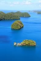 パラオ ロックアイランド クジラ島