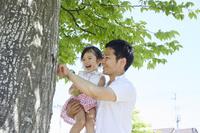 木の幹を見つめる日本人親子