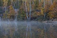 長野県 乗鞍高原 紅葉のまいめの池