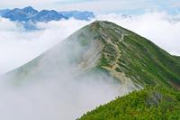 長野県 爺ケ岳南峰と針ノ木岳左奥の山