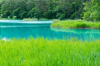 福島県 五色沼 弁天沼