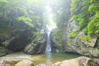山梨県 朝霧の一之釜・男滝と新緑