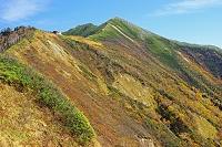 長野県 種池から爺ケ岳