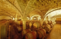 オーストリア ワイン樽が積まれた貯蔵庫