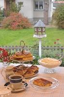 スウェーデン ヴェステロース 自家製ケーキの定番リンゴケーキ...