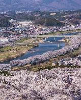 宮城県 船岡城址公園から白石川堤一目千本桜
