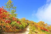 長野県 燕岳登山道