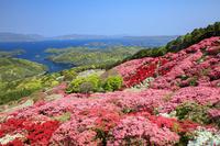 長崎県 クルメツツジ咲く長串山より北九十九島