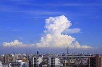 埼玉県 入道雲とビル群