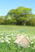 草原に置かれた木製の家